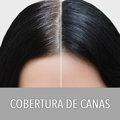 COBERTOR DE CANAS (6)